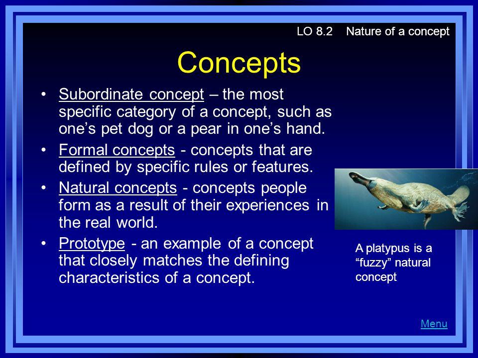 LO 8.2 Nature of a concept Concepts.