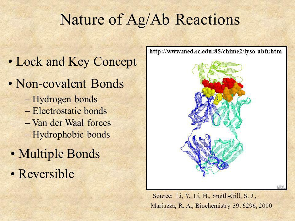 Nature of Ag/Ab Reactions