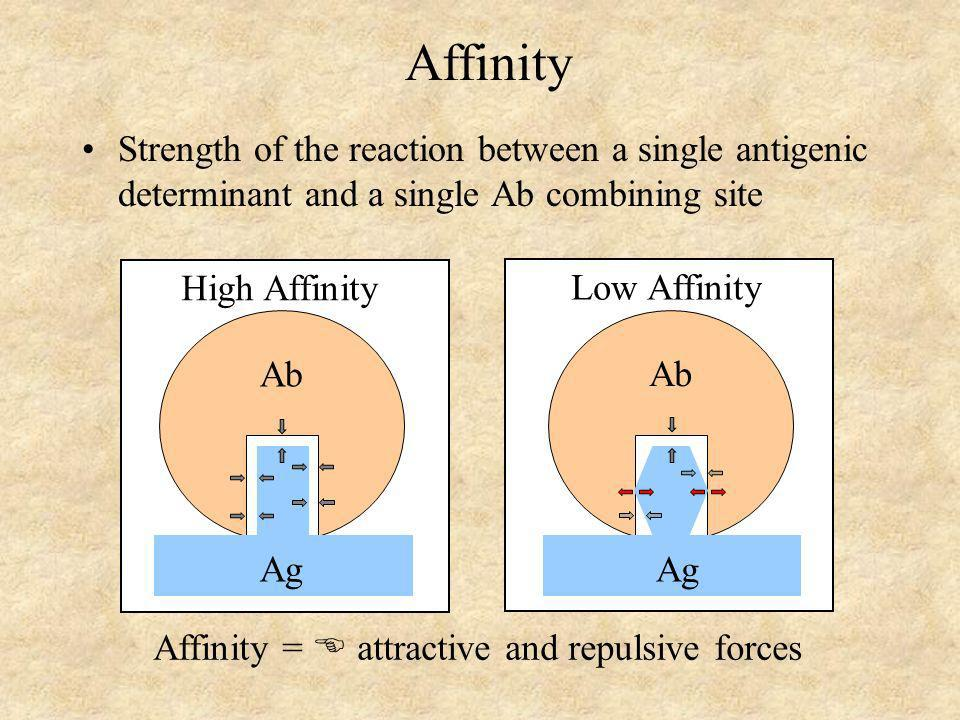 Affinity =  attractive and repulsive forces