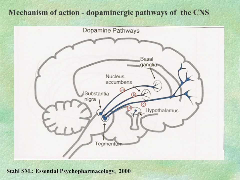Mechanism of action - dopaminergic pathways of the CNS