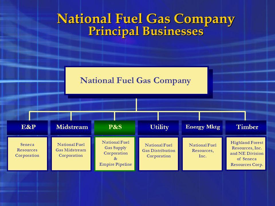 National Fuel Gas Company Principal Businesses