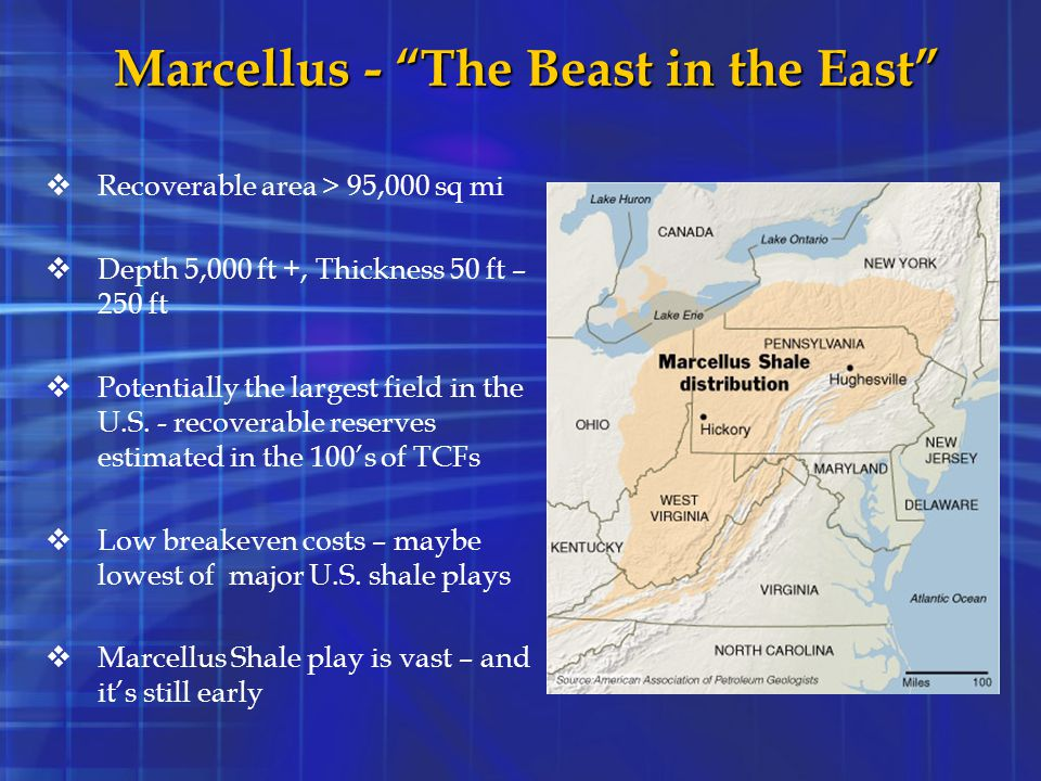Marcellus - The Beast in the East
