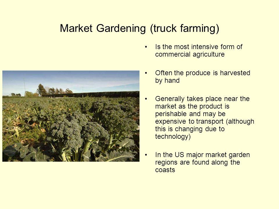 Market Gardening (truck farming)