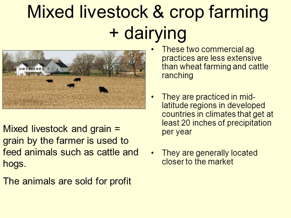 Mixed livestock & crop farming + dairying