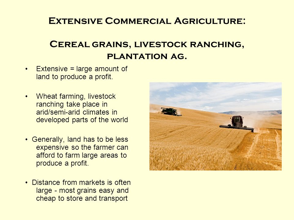 Extensive Commercial Agriculture: Cereal grains, livestock ranching, plantation ag.