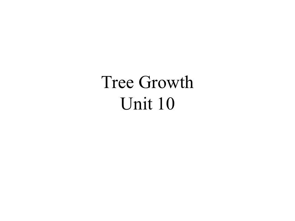 Tree Growth Unit 10