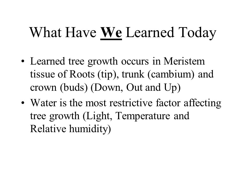 What Have We Learned Today