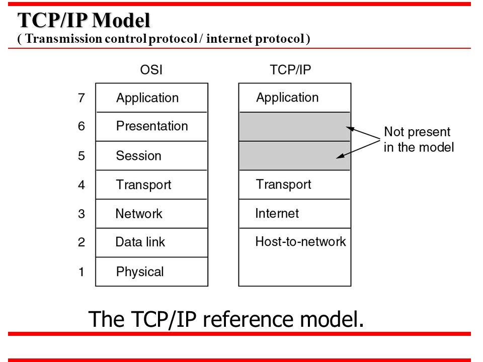 The TCP/IP reference model.