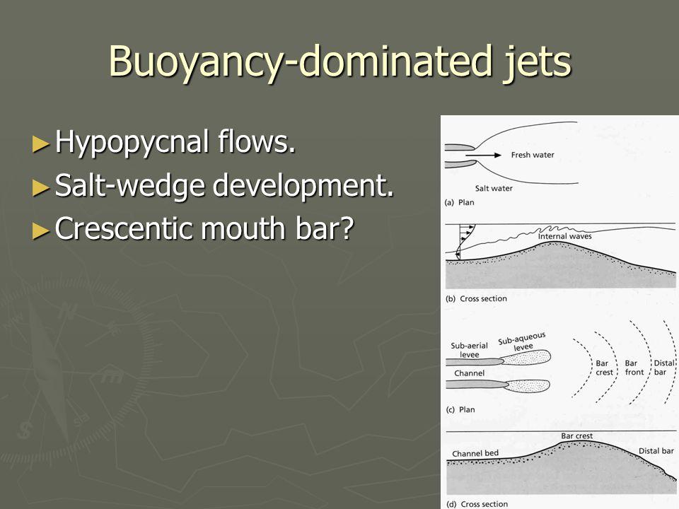 Buoyancy-dominated jets