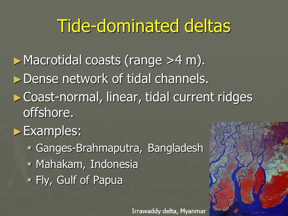 Tide-dominated deltas