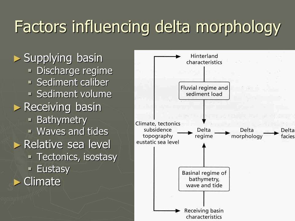 Factors influencing delta morphology