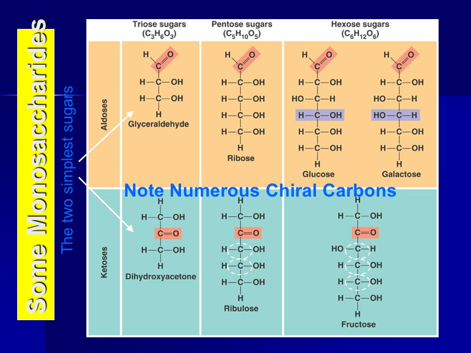 Note Numerous Chiral Carbons