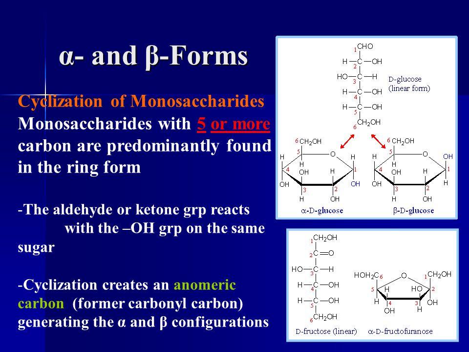 α- and β-Forms Cyclization of Monosaccharides Monosaccharides with 5 or more carbon are predominantly found in the ring form.