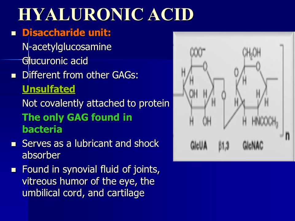 HYALURONIC ACID Disaccharide unit: N-acetylglucosamine Glucuronic acid