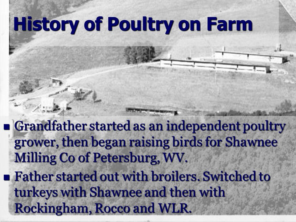 History of Poultry on Farm