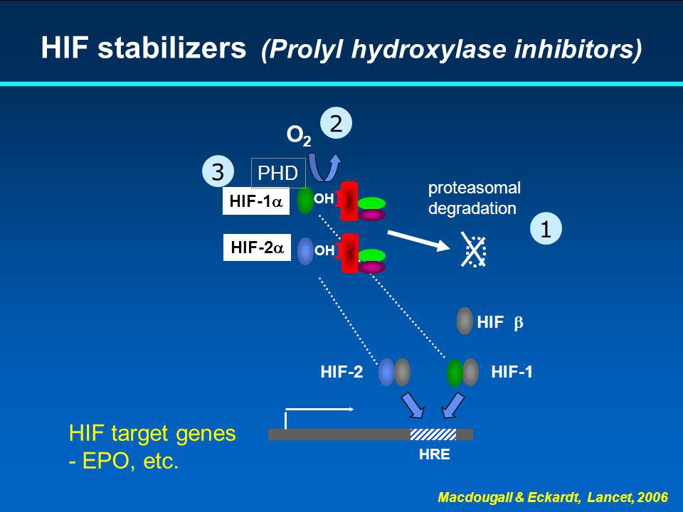 HIF stabilizers (Prolyl hydroxylase inhibitors)