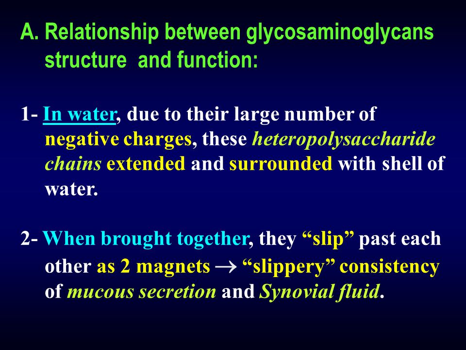 Relationship between glycosaminoglycans structure and function: