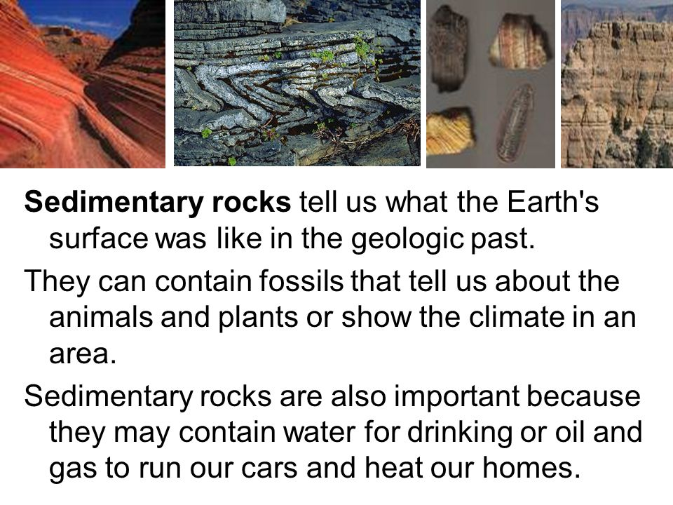 Sedimentary rocks tell us what the Earth s surface was like in the geologic past.