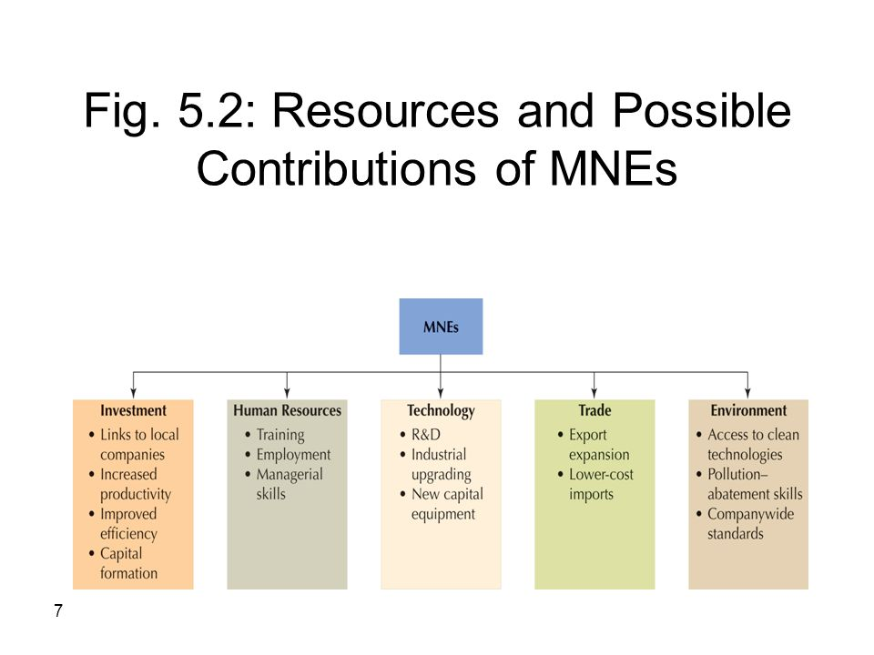 Fig. 5.2: Resources and Possible Contributions of MNEs