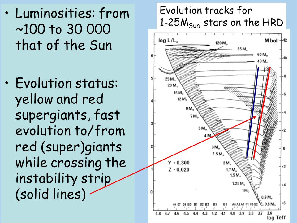 Luminosities: from ~100 to 30 000 that of the Sun