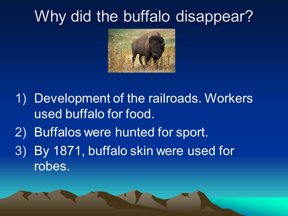 Why did the buffalo disappear