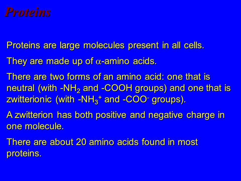 Proteins Proteins are large molecules present in all cells.
