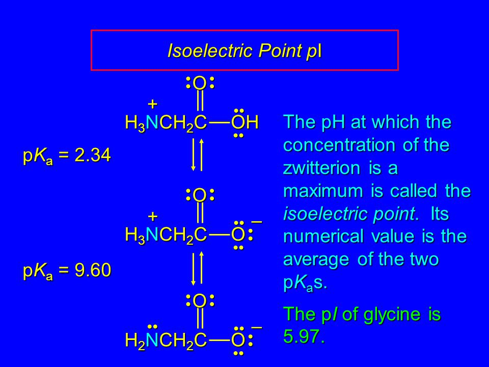 Isoelectric Point pI O OH H3NCH2C +