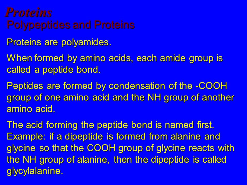 Proteins Polypeptides and Proteins Proteins are polyamides.