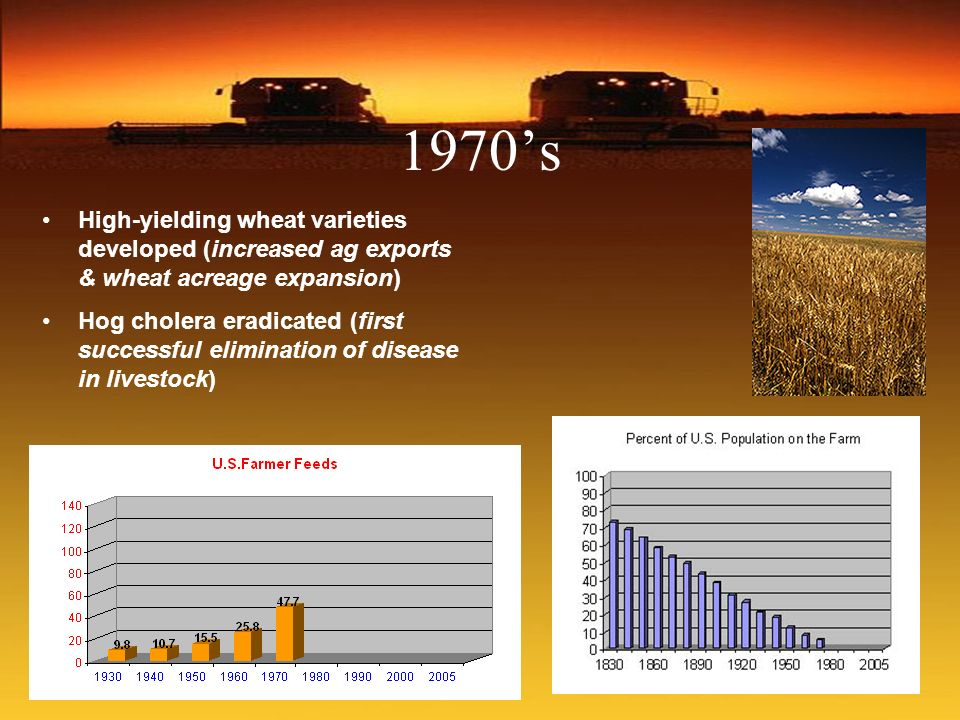 1970's High-yielding wheat varieties developed (increased ag exports & wheat acreage expansion)