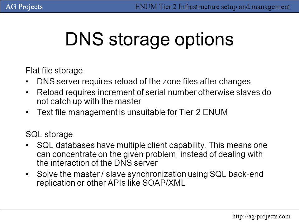 DNS storage options Flat file storage