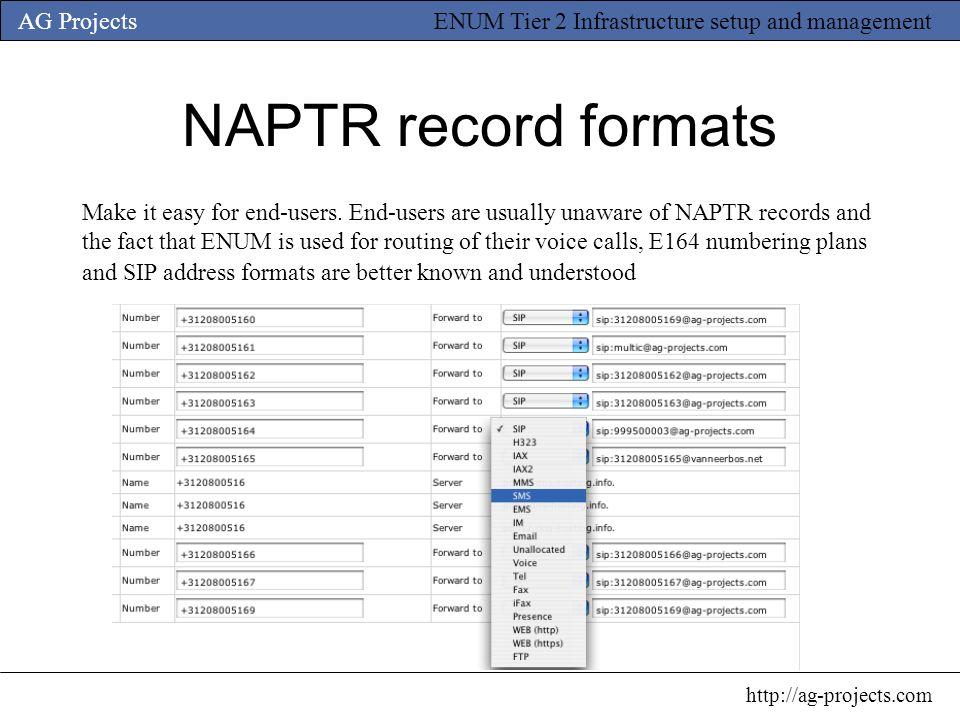 NAPTR record formats