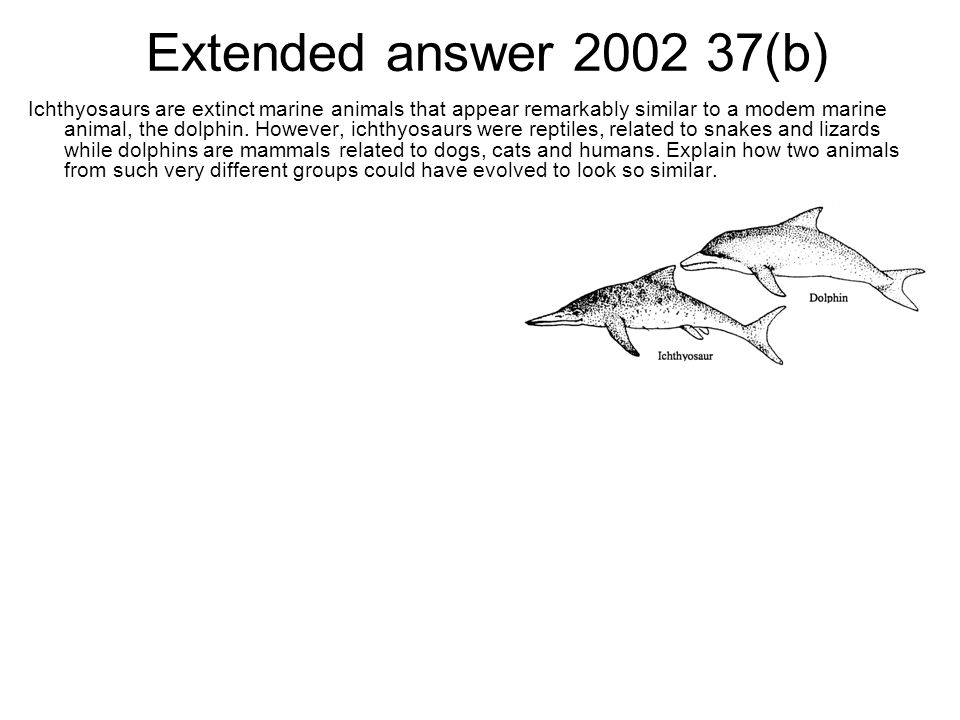 Extended answer 2002 37(b)