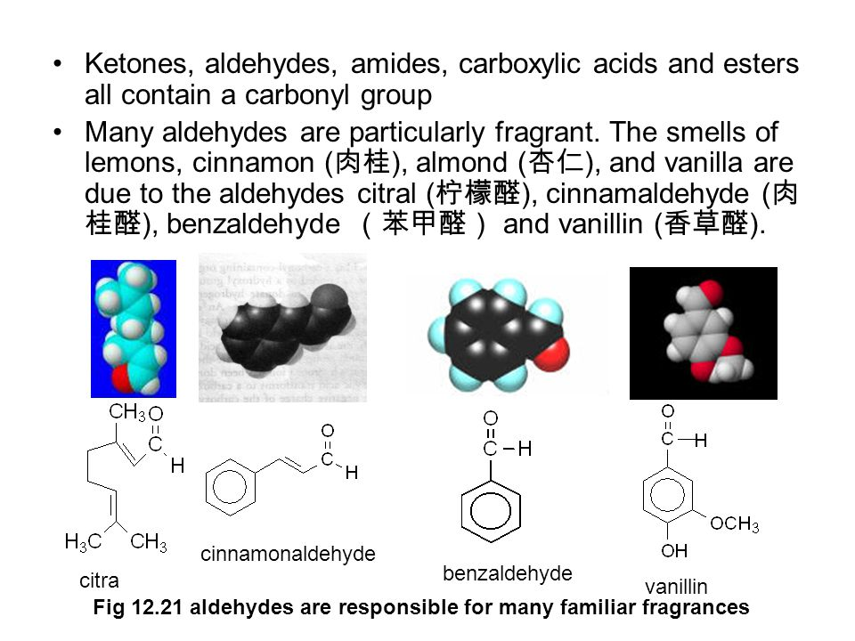 Ketones, aldehydes, amides, carboxylic acids and esters all contain a carbonyl group