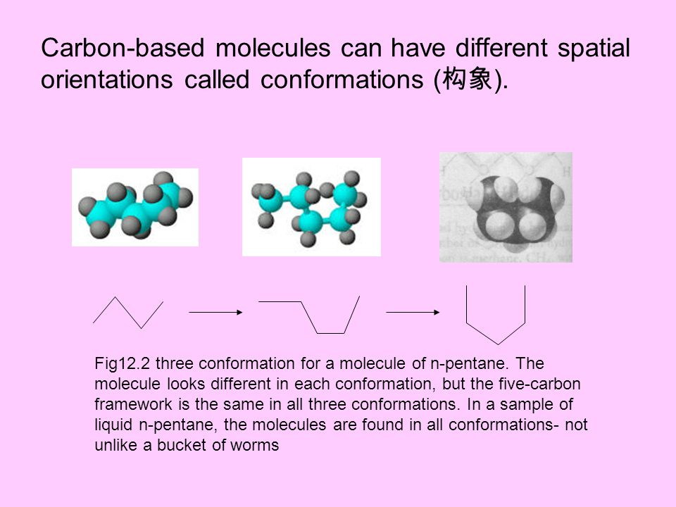 Carbon-based molecules can have different spatial orientations called conformations (构象).
