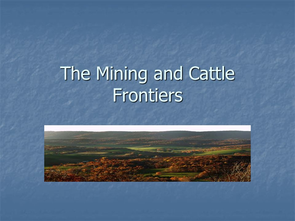 The Mining and Cattle Frontiers