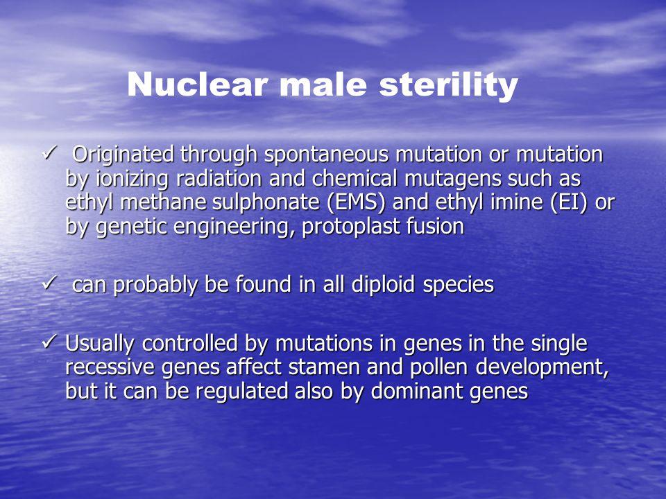 Nuclear male sterility