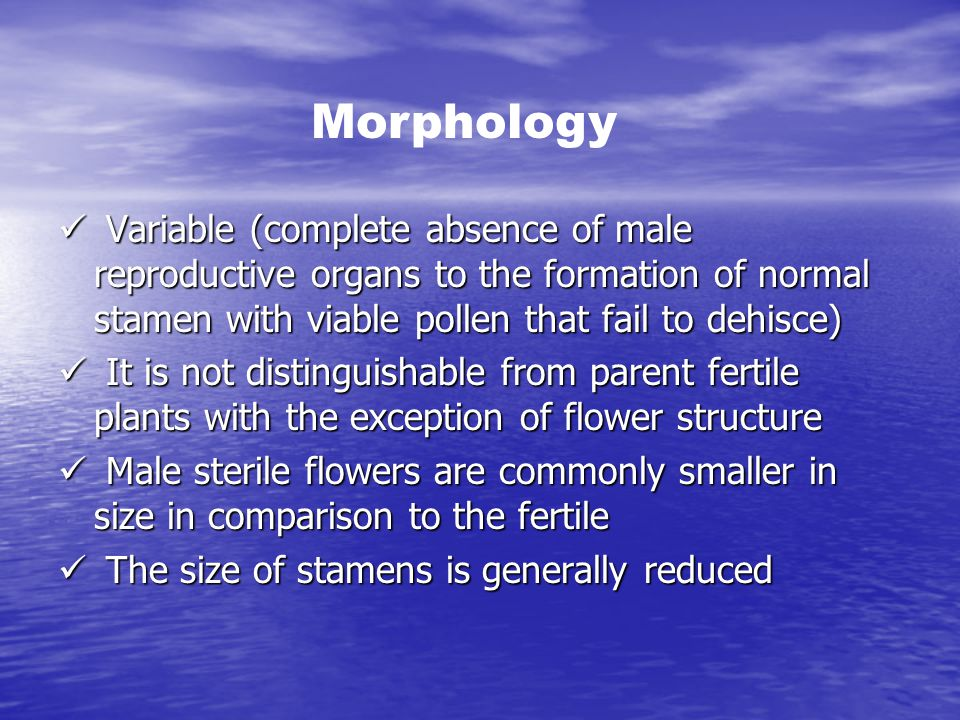 Morphology Variable (complete absence of male reproductive organs to the formation of normal stamen with viable pollen that fail to dehisce)