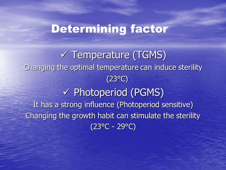 Determining factor Temperature (TGMS) Photoperiod (PGMS)