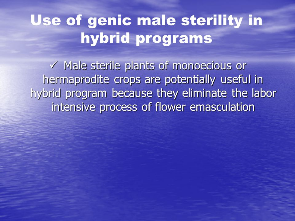 Use of genic male sterility in hybrid programs