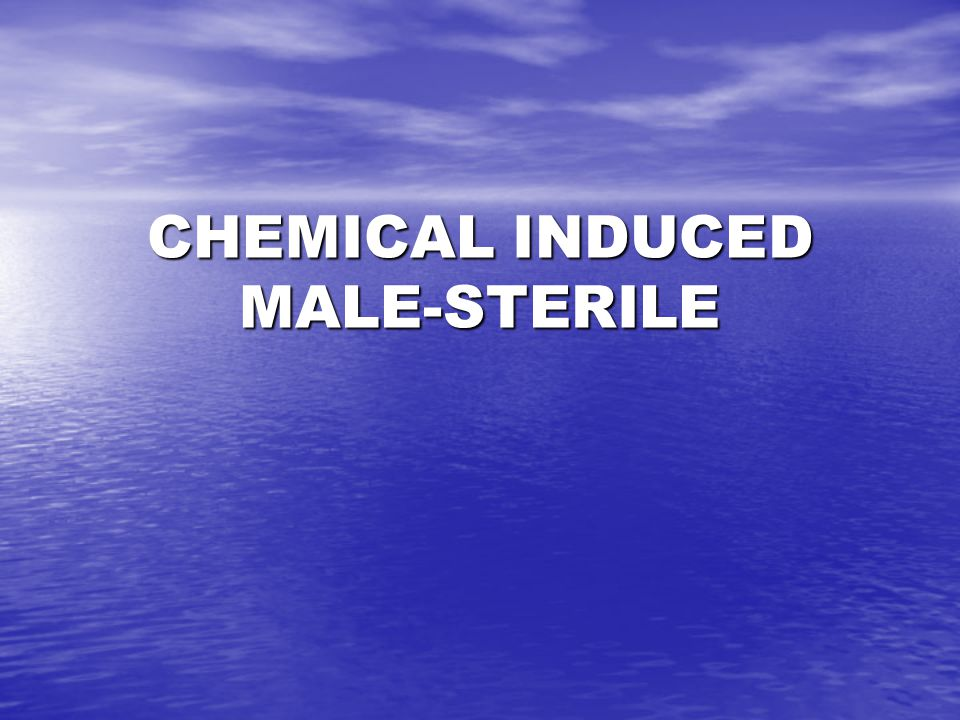 CHEMICAL INDUCED MALE-STERILE