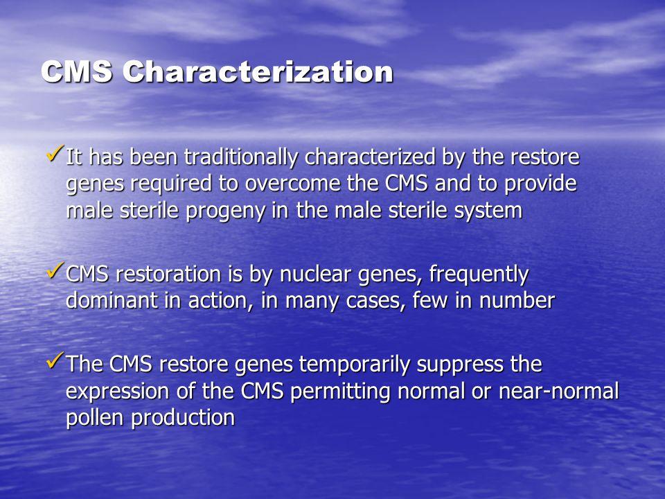 CMS Characterization
