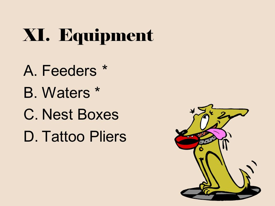 XI. Equipment Feeders * Waters * Nest Boxes Tattoo Pliers