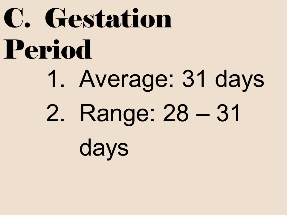 C. Gestation Period Average: 31 days Range: 28 – 31 days