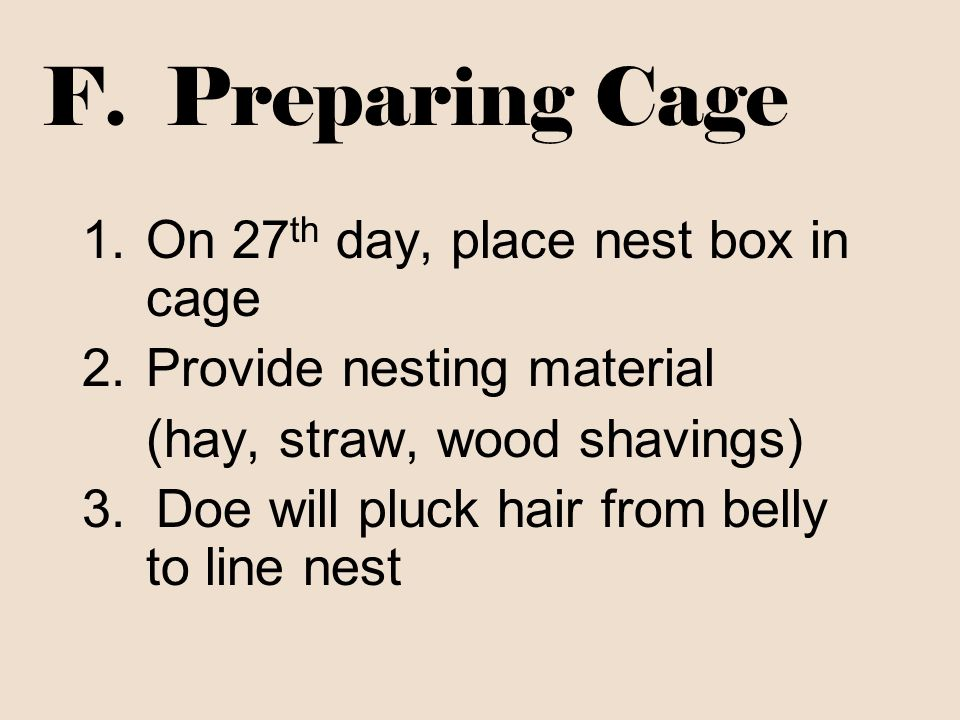 F. Preparing Cage On 27th day, place nest box in cage