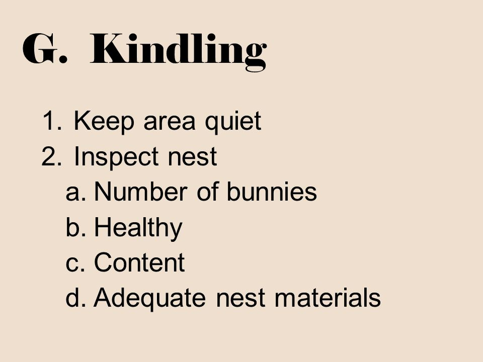 G. Kindling Keep area quiet Inspect nest Number of bunnies Healthy