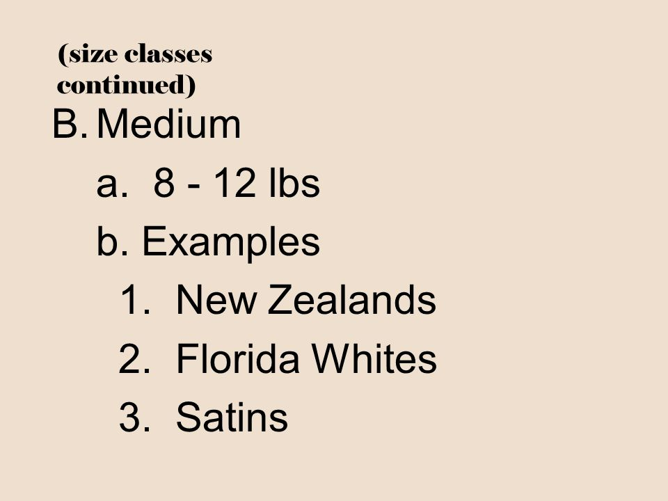 (size classes continued)