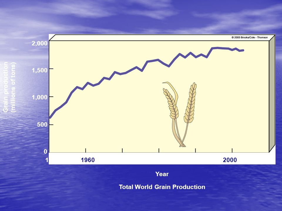 Total World Grain Production