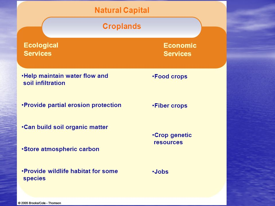Figure 14-3 Page 276 Natural Capital Croplands Ecological Services