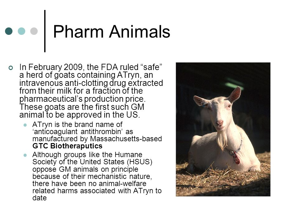 Pharm Animals