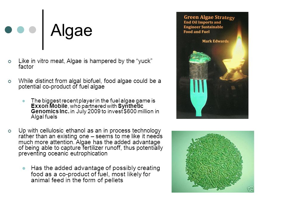 Algae Like in vitro meat, Algae is hampered by the yuck factor.